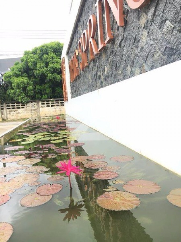 เดอะ สปริง คอนโด เชียงใหม่ The Spring Condo Chiangmai