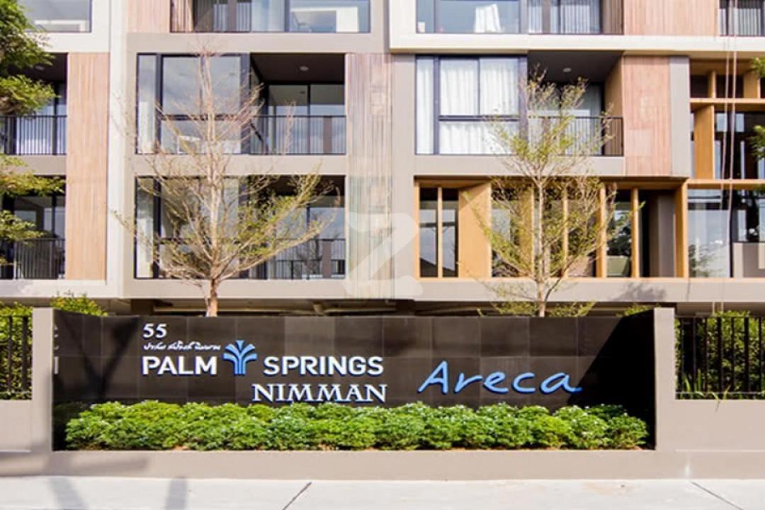 ปาล์มสปริงส์ นิมมาน แอริค่า Palm Springs Nimman Areca