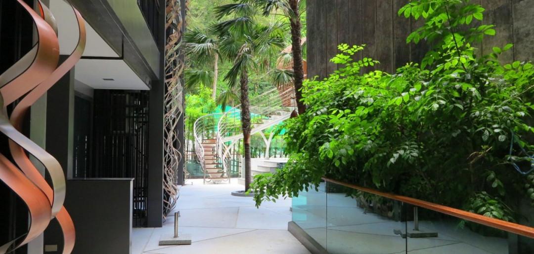 ดิ เอ็มเมอร์รัล เทอเรซ คอนโด ป่าตอง The Emerald Terrace Condo Patong
